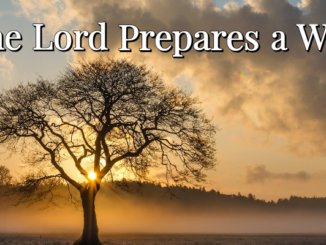 The Lord Prepares a Way
